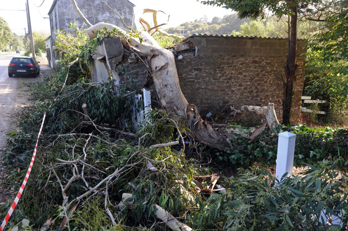 A view of a tree which fell and damaged a house during an overnight storm which passed over northwestern France and Britain, on October 28, 2013, in La Roche-Maurice, northwestern France. (AFP Photo)