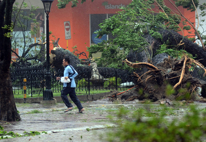 A resident runs past an uprooted tree amidst strong winds as Typhoon Haiyan pounded Cebu City, in central Philippines on November 8, 2013 (AFP Photo)