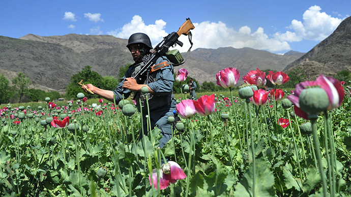​Land used for opium cultivation at historic high – UN