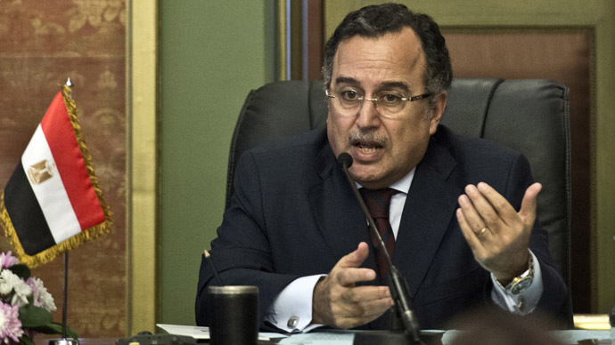 Egyptian Foreign Minister Nabil Fahmi (AFP Photo/Khaled Desouki)