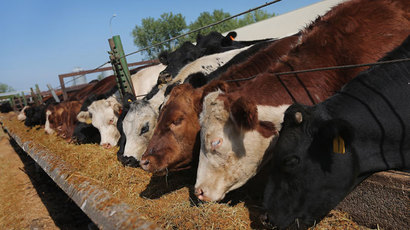 ​FDA did not act after deeming animal feed antibiotics 'high risk' to humans - report