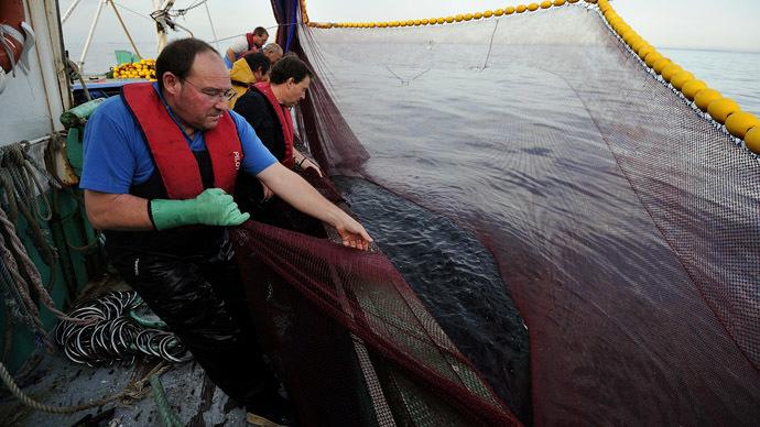 China bans American shellfish over high levels of arsenic