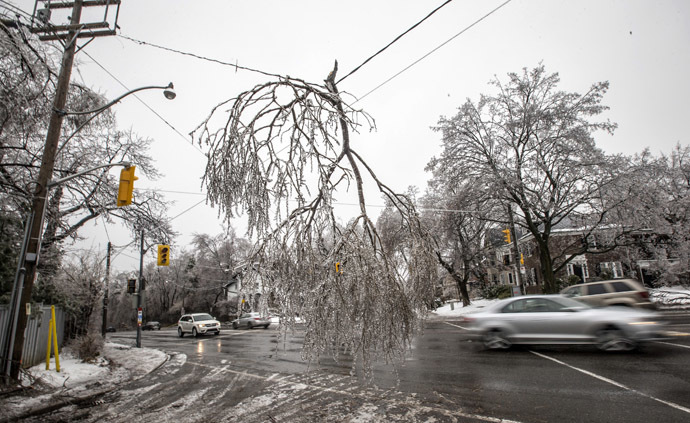 Cars drive by a fallen tree limb hanging from a power line following an ice storm in Toronto, December 22, 2013. (Reuters/Mathieu Belanger)