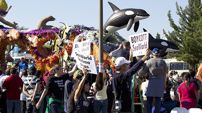 Agent provocateur? PETA claims SeaWorld employee infiltrated protests