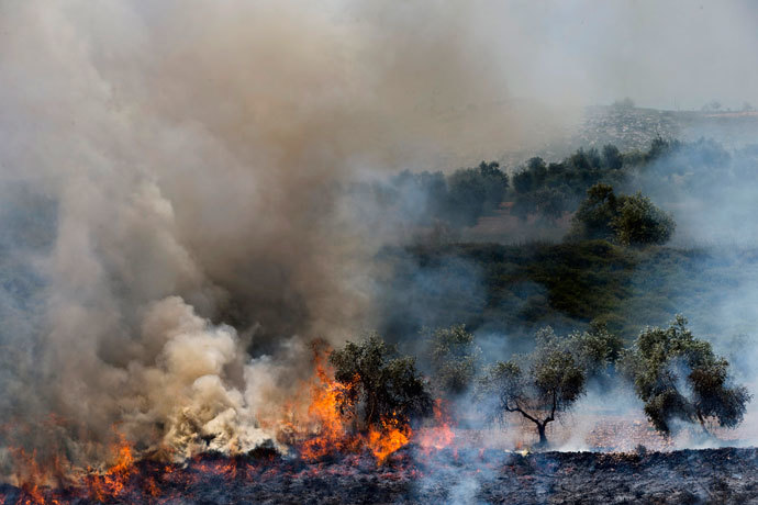 Olive trees, that according to Palestinians were set ablaze by Jewish settlers after a stabbing attack, burn near the West Bank Jewish settlement of Yitzhar near Nablus April 30, 2013.(Reuters / Nir Elias )