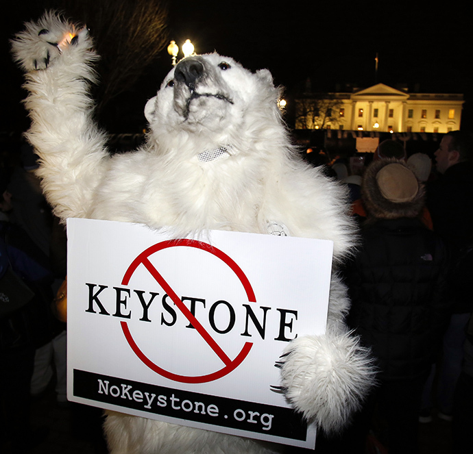 An activist dressed like a polar bear protests against the Keystone XL oil pipeline outside The White House in Washington February 3, 2014. (Reuters / Yuri Gripas)