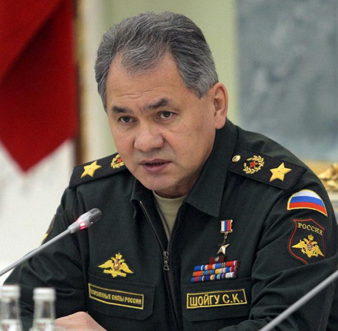 Russian Defence Minister Sergei Shoigu (RIA Novosti/Sergey Mamontov)