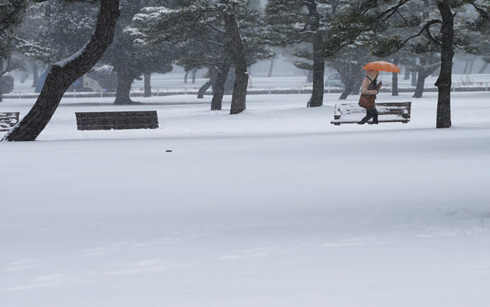 A woman walks in a park near the Imperial Palace as snow falls in Tokyo February 8, 2014 (Reuters / Toru Hanai)