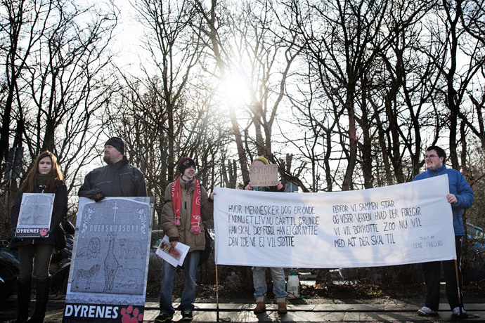 Some 20 people demonstrate outside Copenhagen Zoo against the killing and of a perfectly healthy young giraffe named Marius on Febuary 9, 2014 despite an online petition to save it signed by thousands of animal lovers.(AFP Photo / Kasper Palsnov)