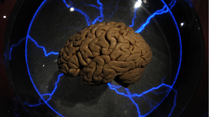 Size does matter: Scientists discover gene linking gray matter to intelligence