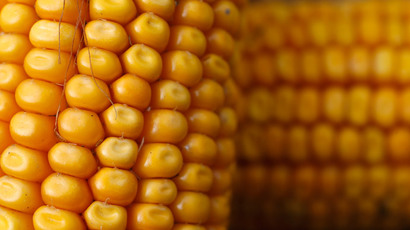 ​EU fear of GM food from US hampers historic trade deal