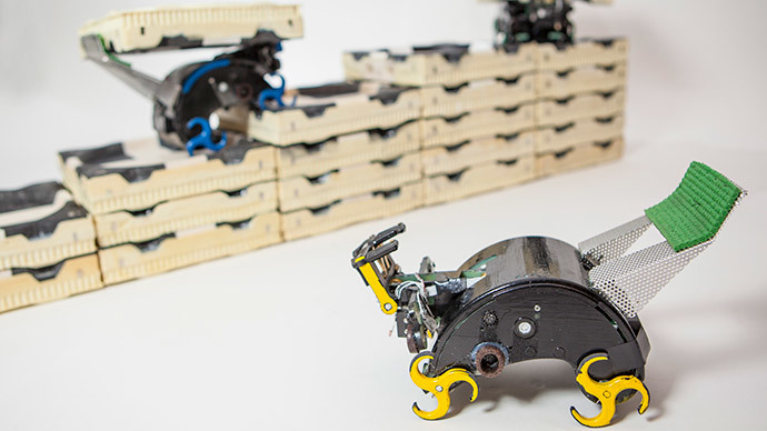 Self-organizing robot armies produced - and all thanks to ingenious termite logic