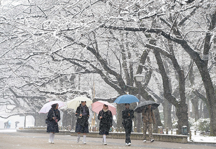 Students walk under snow covered trees at a park in Tokyo on February 14, 2014. (AFP Photo / Toru Yamanaka)