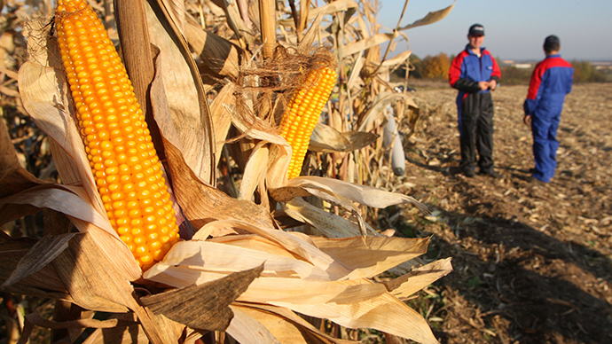 Scientists urge UK govt to ditch 'dysfunctional' GMO regulations