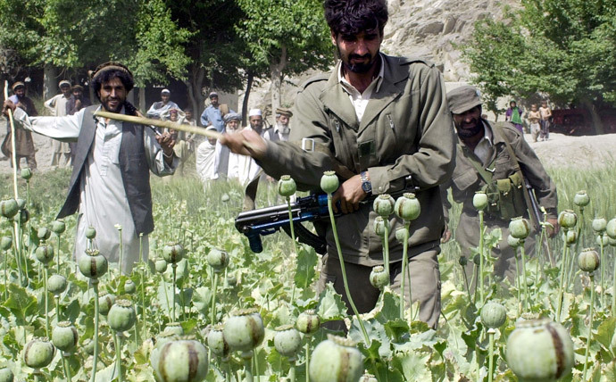 An Afghan government official (L) and two Afghan National Army soldiers (C and R) cut down opium poppies in Bihsood district, some 25 kms north of Jalalabad , 08 April 2004. (AFP Photo / Shah Marai)
