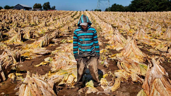 US child tobacco farms: 60hrs a week in heat, nicotine exposure