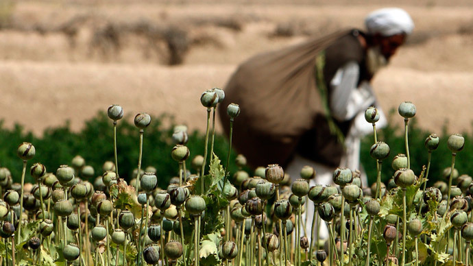 ​Intl anti-narcotic office needed to combat Afghan heroin – Russia