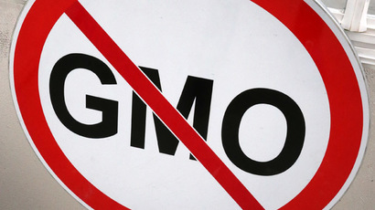 World needs UN GMO watchdog – Russia