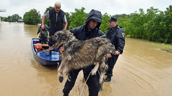 ​Inspiring images: People risk their lives saving animals from devastating Balkans flood