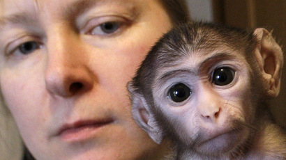 Scientists go ape after Indian minister dubs Darwin theory 'wrong'
