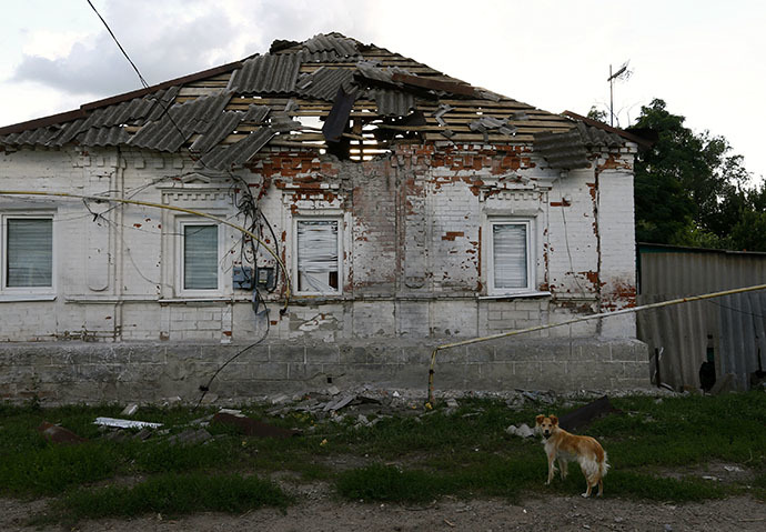 A dog stands near a building damaged by shelling from government forces as they fight separatists in the eastern Ukrainian city of Slaviansk June 16, 2014. (Reuters / Shamil Zhumatov)