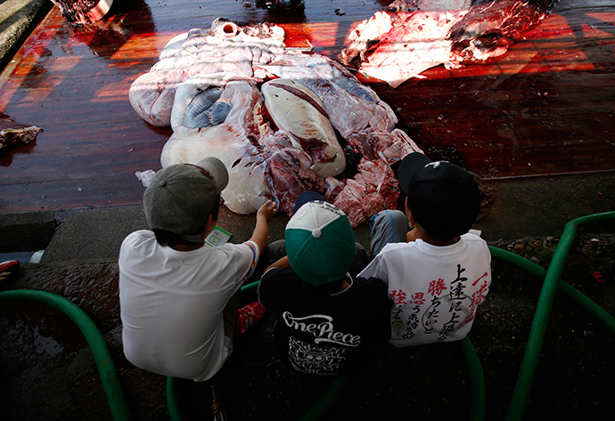 Grade school students watch a carved Baird's Beaked whale at Wada port in Minamiboso, southeast of Tokyo June 26, 2014 (Reuters / Issei Kato)