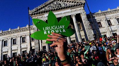 Uruguay calls out to cannabis growers to join govt's pot project