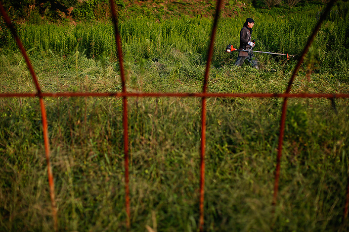 A farmer cuts the grass at an abandoned farm at the edge of the exclusion zone at the coastal area near Minamisoma near the crippled Daiichi nuclear plant in Fukushima prefecture (Reuters / Damir Sagolj)