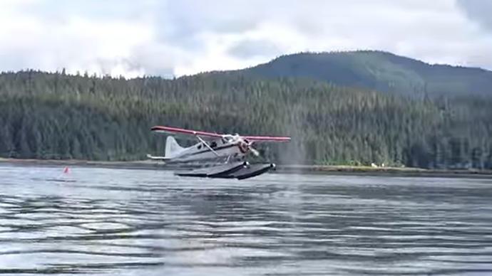Beware of whales: Plane's near-miss with giant mammal goes viral (VIDEO)