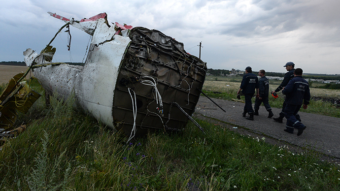 The crash site of the Malaysian Boeing 777 outside Shakhtyorsk, Donetsk Region (RIA Novosti)