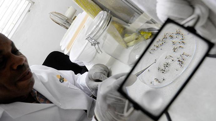 Puerto Rico announces epidemic of mosquito-borne virus chikungunya