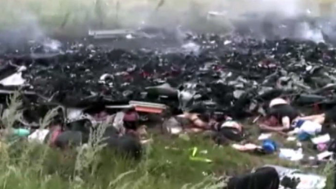 The site of crashed Malaysian plane (screenshot from RT video)