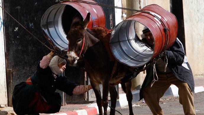 Israel complains of Hamas donkey-terrorists
