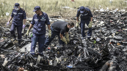 Putin: West should demand Kiev obey ceasefire during plane crash probe