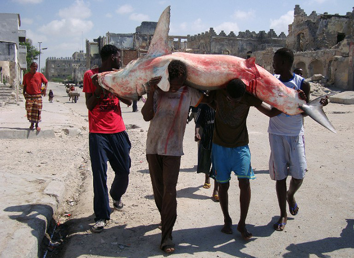 Somali fishermen carry a shark from the shores of the Indian ocean in Hamarweyne district of Somalia's capital Mogadishu (AFP Photo / Mohamed Abdiwahab)