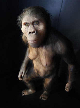 A reproduction is pictured at the chamber of evolution of the Museum of Human Evolution (AFP Photo / Cesar Manso)