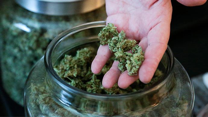 Legalize marijuana at federal level, urge NYT editors