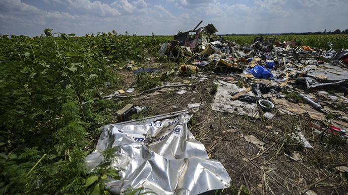 A photo taken on July 23, 2014 shows the crash site of the downed Malaysia Airlines flight MH17, in a field near the village of Grabove, in the Donetsk region. (AFP Photo / Bulent Kilic)