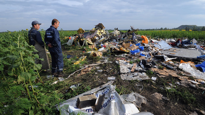 Dutch investigators to RT: 'We had no possibility to visit the MH17 crash site'