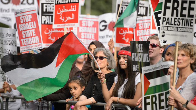A demonstrator waves the Palestinian flag during a protest near the Israeli embassy in central London on August 1, 2014.(AFP Photo / Leon Neal)