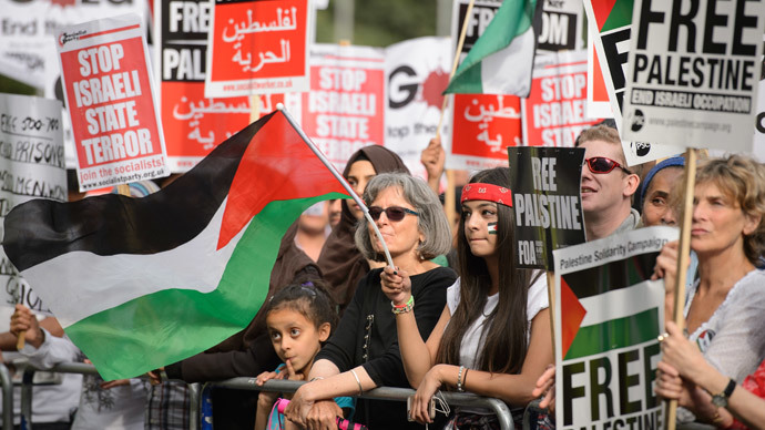 A demonstrator waves the Palestinian flag during a protest near the Israeli embassy in central London on August 1, 2014.(AFP Photo / Leon Neal )
