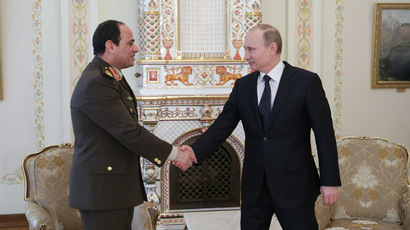 Russia, Egypt looking to create a free trade zone - Putin