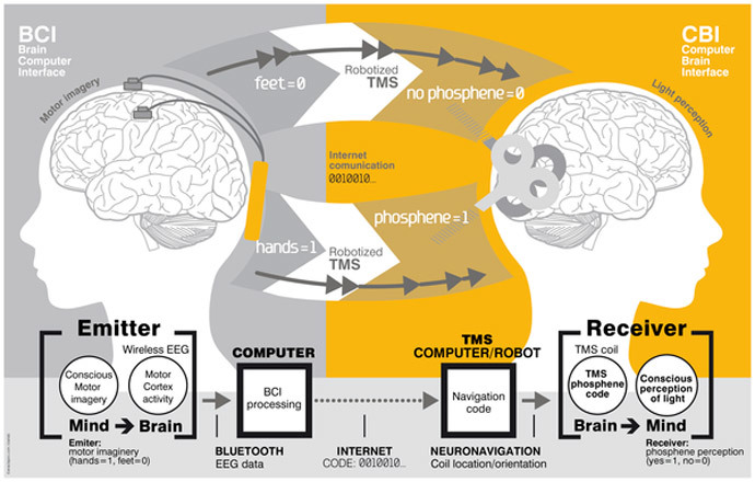 Image from plosone.org