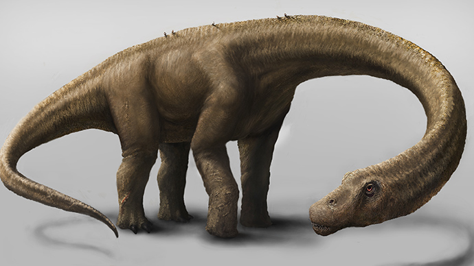 This artist's rendering hand out on September 4, 2014 by the Carnegie Museum of Natural History shows a Dreadnoughtus schrani in life (AFP Photo / HO / Mark A. Klinger)
