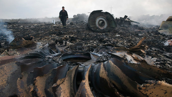 An Emergencies Ministry member walks at a site of a Malaysia Airlines Boeing 777 plane crash near the settlement of Grabovo in the Donetsk region, July 17, 2014.(Reuters / Maxim Zmeyev)