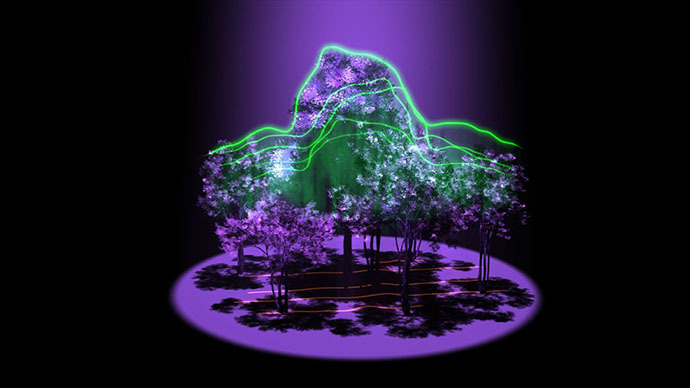 Beam me down: NASA's GEDI laser to 3D-map Earth's forests