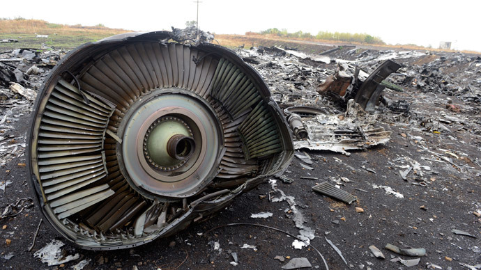 Lavrov: No haste in MH17 tragedy probe, despite media hype