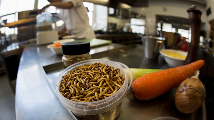 Can of mealworms: Belgium starts selling products made with insects