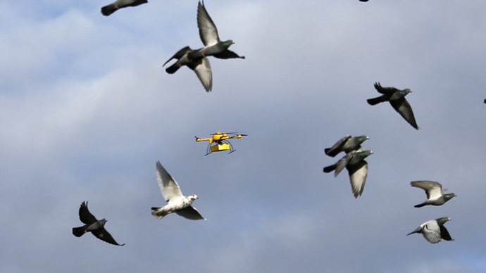"A flock of pigeons flies with a prototype ""parcelcopter"" of German postal and logistics group Deutsche Post DHL in Bonn December 9, 2013. (Reuters/Wolfgang Rattay)"