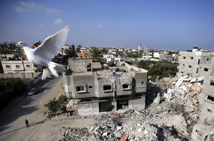 A Pigeon flies near the remains of a house, which witnesses said was destroyed by an Israeli air strike, in the central Gaza Strip August 23, 2014. (Reuters/Ibraheem Abu Mustafa)
